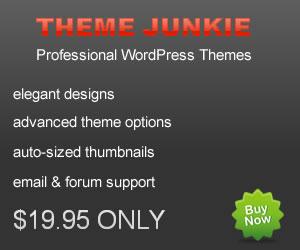 Theme Junkie